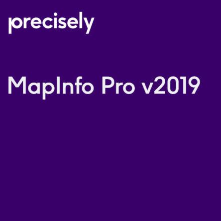 MapInfo Pro 2019 licentie voor 1 jaar